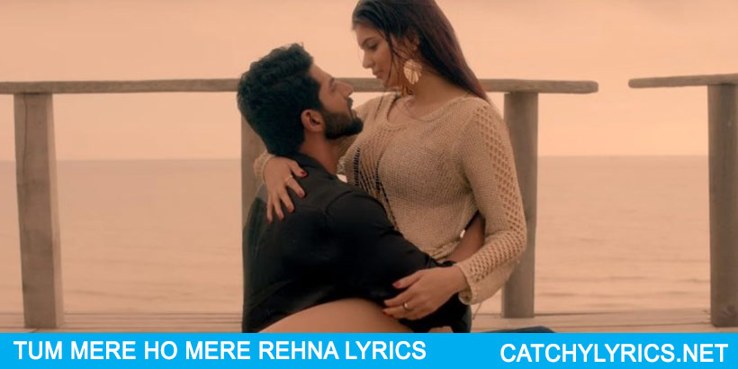 TUM MERE HO LYRICS – Hate Story 4  – Jubin Nautiyal images